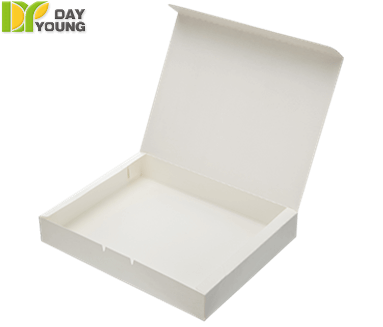 Disposable Dishes|Extra Large Snack Box|Disposable Cups Manufacturer and Supplier - Day Young, Taiwan